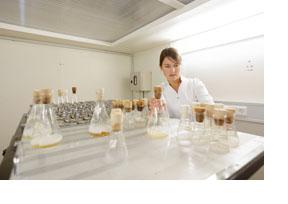 Frau in einem biologischen Labor. (Foto: Thorsten Ulonska)
