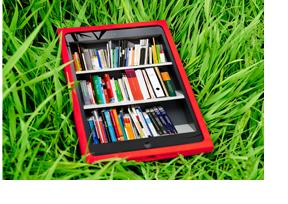 Ein rotes Tablet im Rasen. (Foto: Julien Fertl)