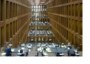 Studierende in einer Bibliothek. (Foto: Sonja Trabandt)